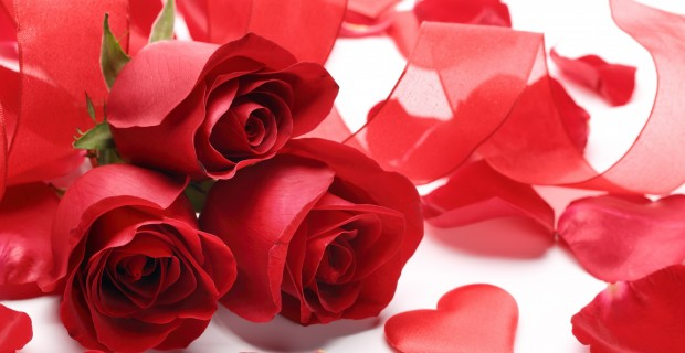 happy_valentines_day_2015_red_roses